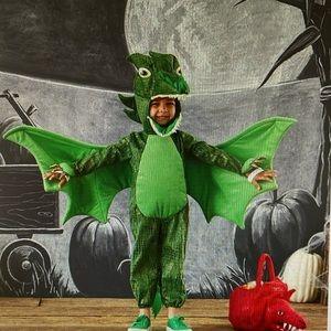 Pottery Barn Green Dragon Costume